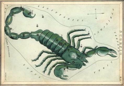 el escorpion